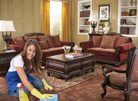 Great Lakes Carpet Cleaning Maid Service